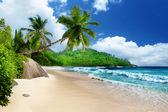 Fotografie beach at Mahe island, Seychelles
