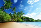 západ slunce na pláži, ostrov Mahé, Seychely