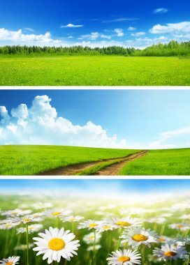 banners of spring fields and flowers