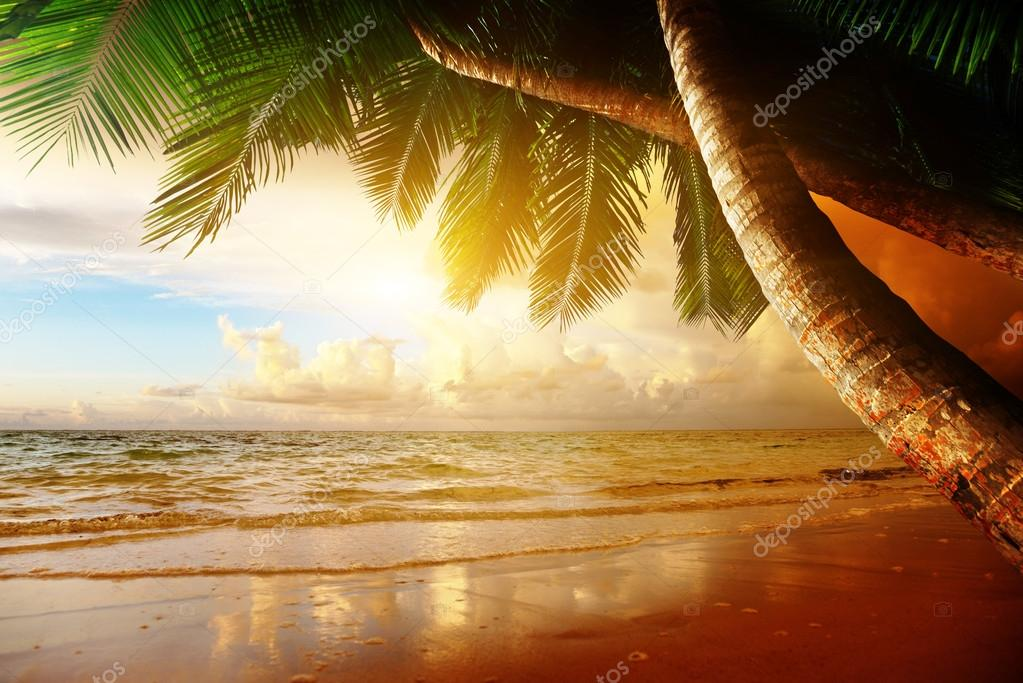 Фотообои sunrise on Caribbean beach