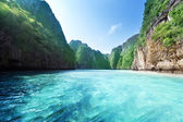 Bay na ostrově phi phi v Thajsku