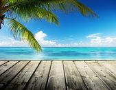 Karibské moře a dokonalé obloha