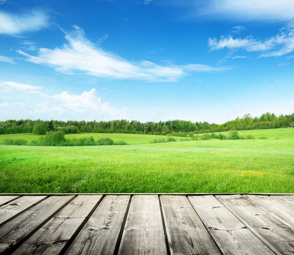 field of grass and perfect sky — stock photo © iakov #32148145