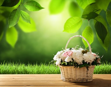 flowers on table and spring forest