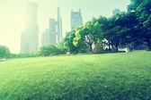 Fotografie park in  lujiazui financial centre, Shanghai, China