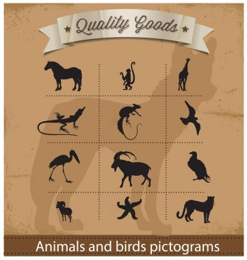 Animals and birds pictogram symbols set