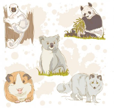 Wildlife animals retro set