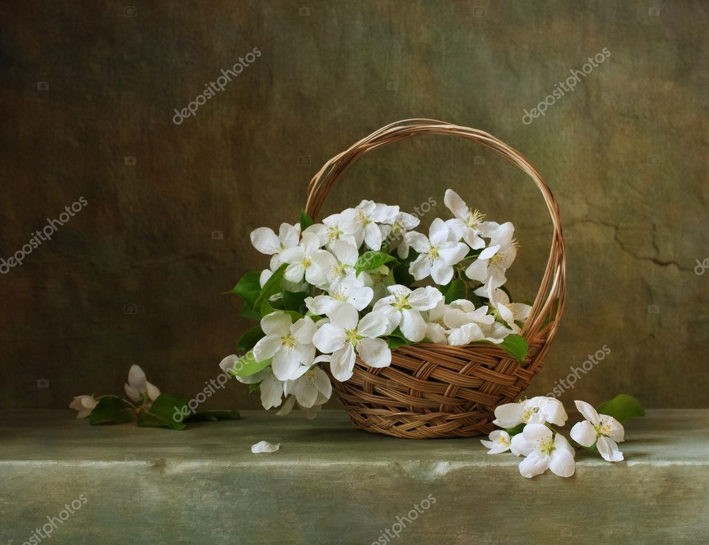 Still life with a basket of flowers apple