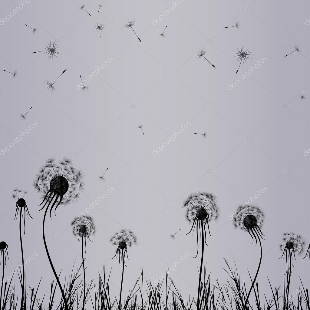 Dandelion wind in grass