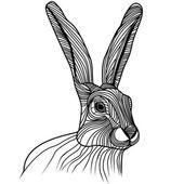 Fotografie Kaninchen- oder Hasenkopfvektorillustration