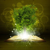 Fotografie Öffnen Sie das Adressbuch mit magischen grünen Baum und Lichtstrahlen