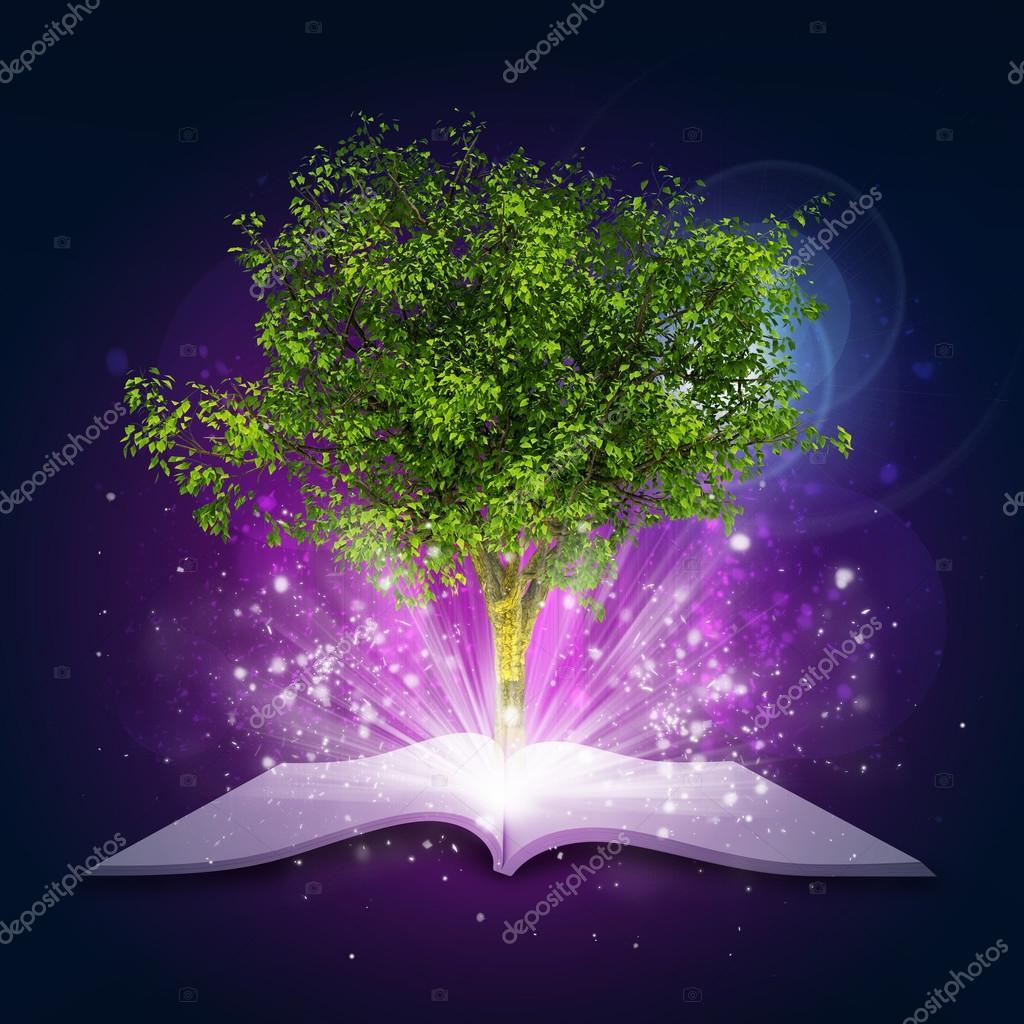 Libro Aperto Con Albero Verde Magico E Raggi Di Luce Foto Stock