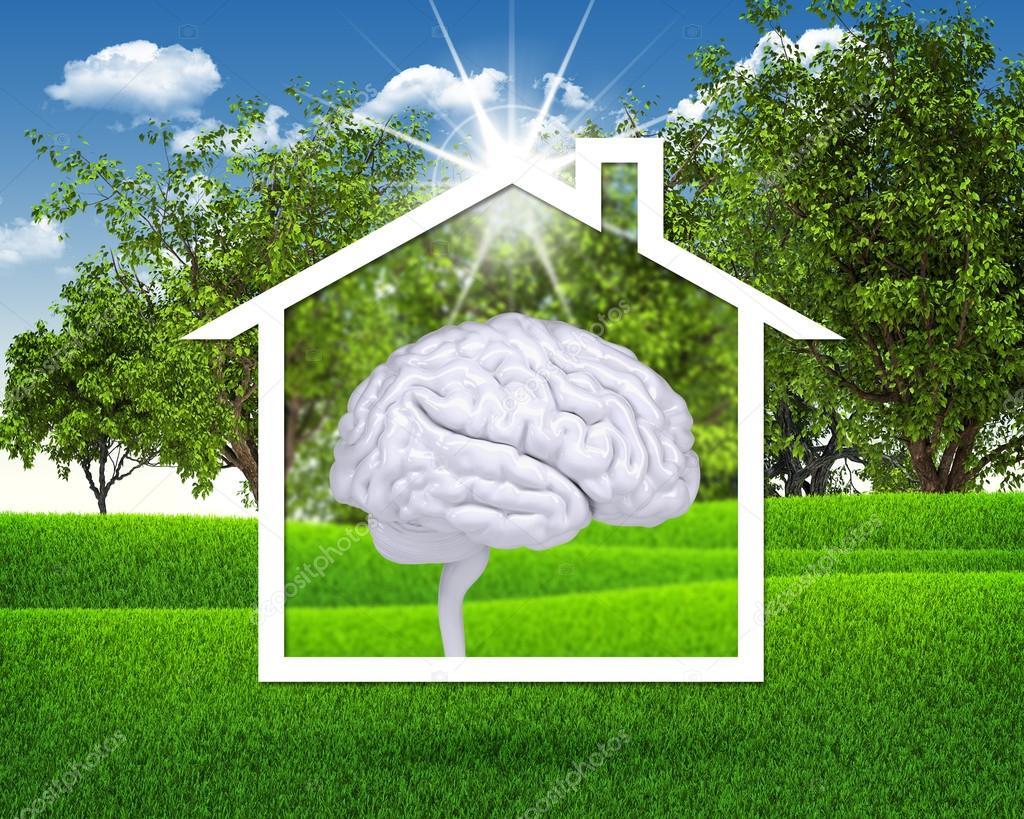 House icon with white brain