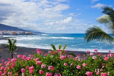 Beach playa Jardin, Tenerife, Spain