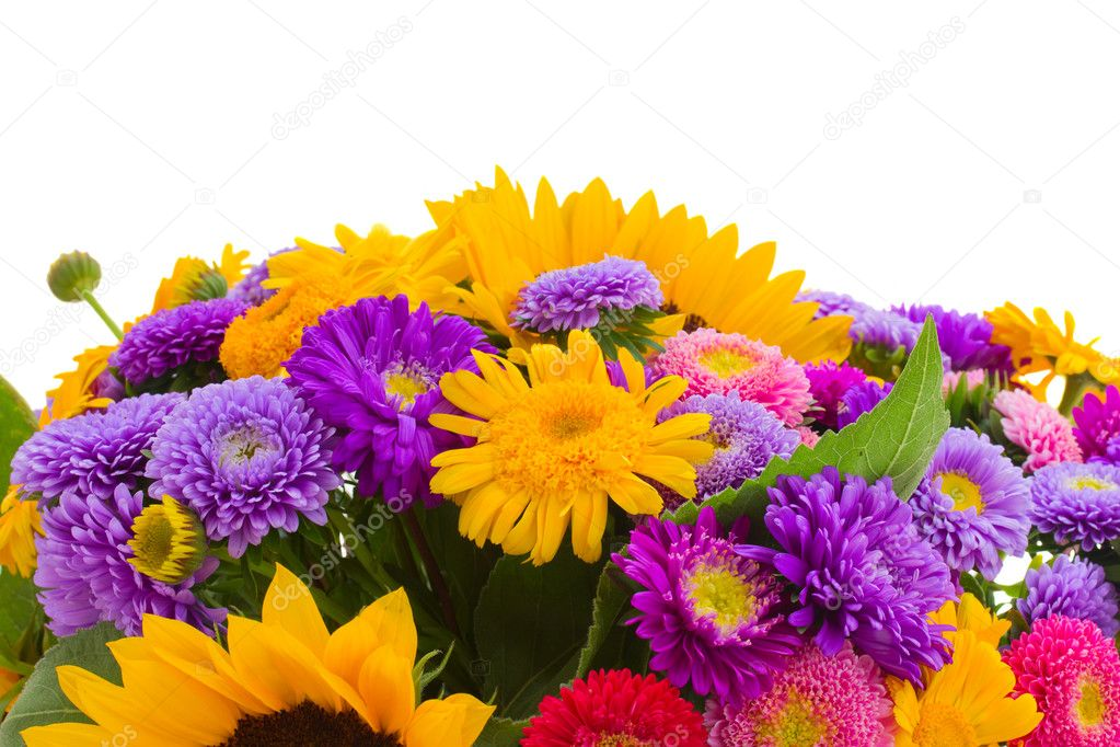 Colorful bunch of autumn flowers border