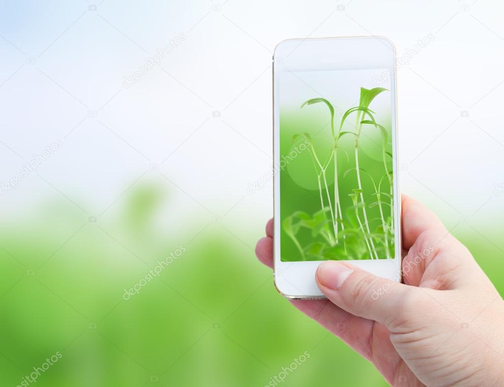 Holding smart phone against spring green background