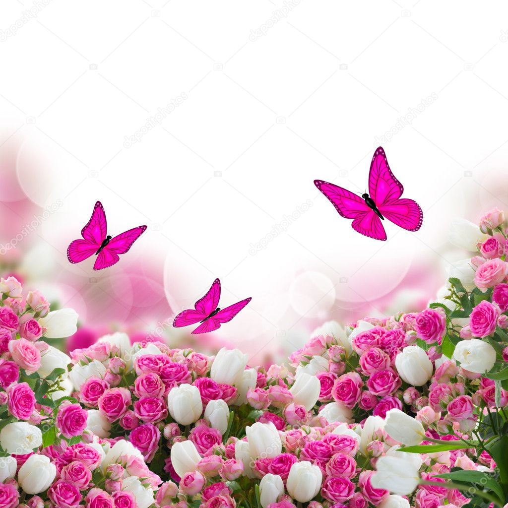 bunch of roses and tulips flowers with butterflies