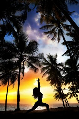 Yoga silhouette near palm trees