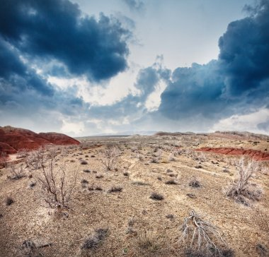 Dry earth and overcast sky