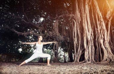 Yoga near banyan tree