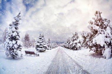 Kış park