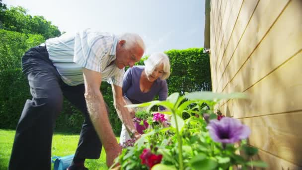 Happy retired couple gardening on a summer day