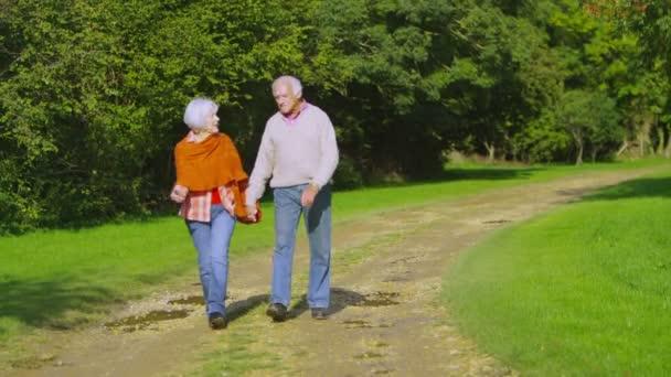 starší pár chůze v přírodě