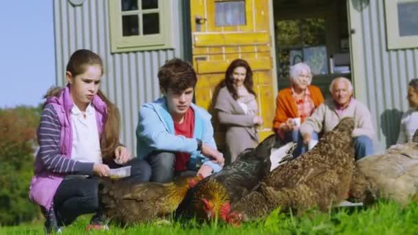 rodina krmení kuřat mimo kuriózní caravan
