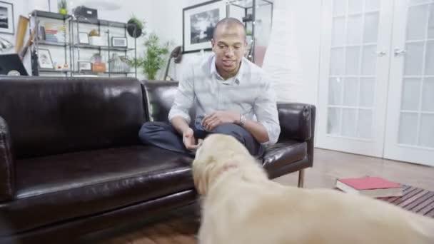 muž relaxační hází míč pro psa chytit