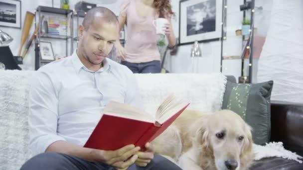 pár- és kisállat kutya relaxáló otthon