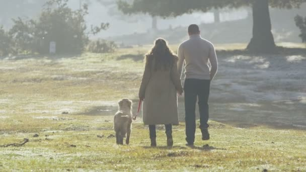 Couple holding hands and walking with dog