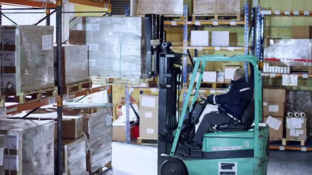 Forklift truck driver moving boxes