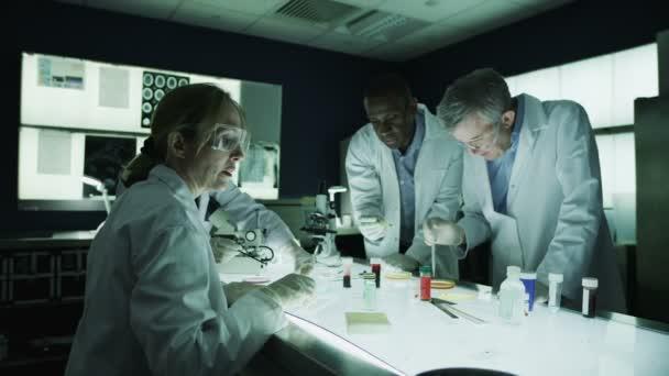 lékařský výzkum tým pracující v laboratoři