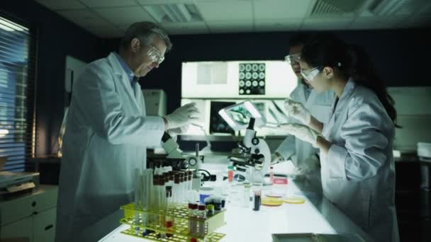 Researchers working in laboratory facility