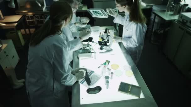 zralé muže vědec výuky studentů