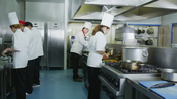 Chef cucina piatti in cucina commerciale