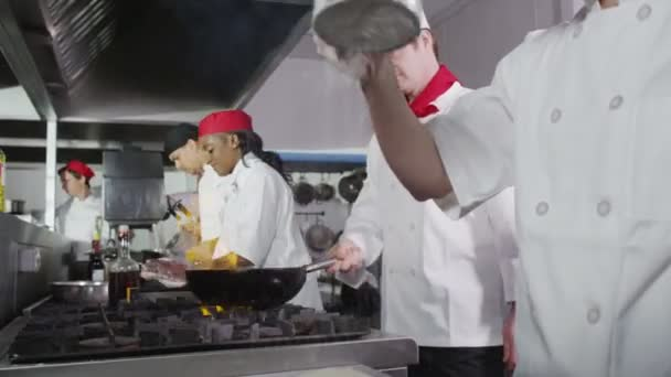 Team of professional chefs preparing and cooking food in a commercial kitchen.