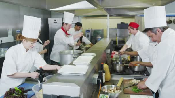 Team of professional chefs preparing food in a commercial kitchen
