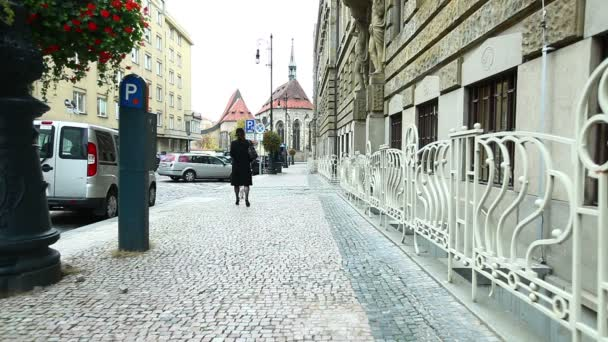 žena v černém kabátě chůze se psem na pražské ulici