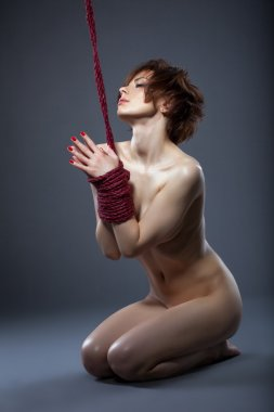 Sensual nude model posing tied with rope
