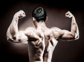 Photo Muscular male back