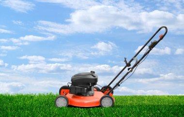 Lawn mower clipping green grass