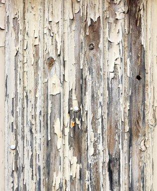 Peeling paint wooden surface