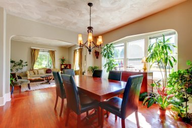 Dining and living room with plants and hardwood.