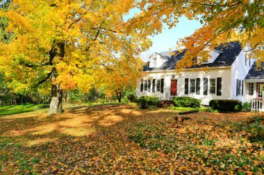 Classic New England American house exterior during fall.
