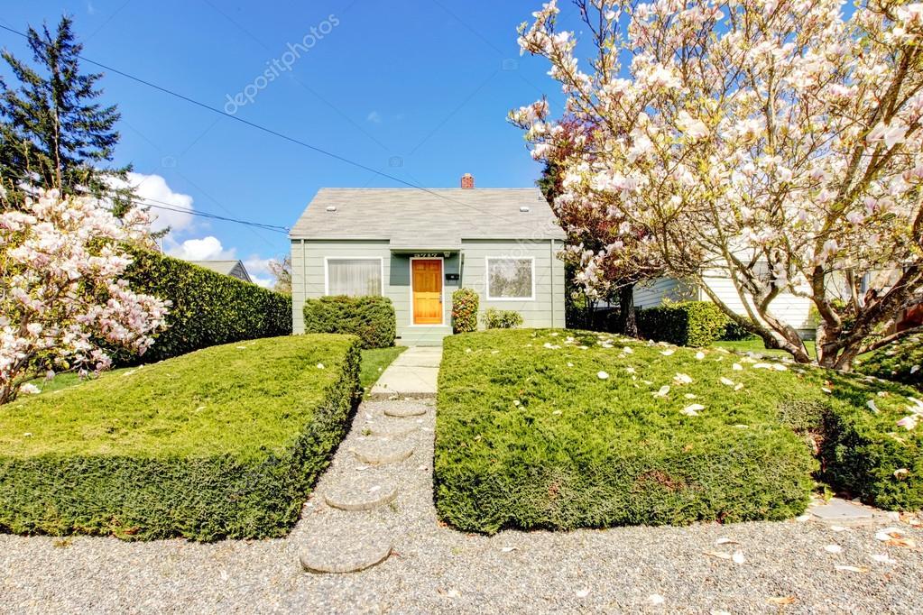 Kleines Grünes Haus Außen Mit Frühjahr Blühende Magnolien Bäume. In 1942  Amerikanische Haus Bauen U2014 Foto Von Iriana88w