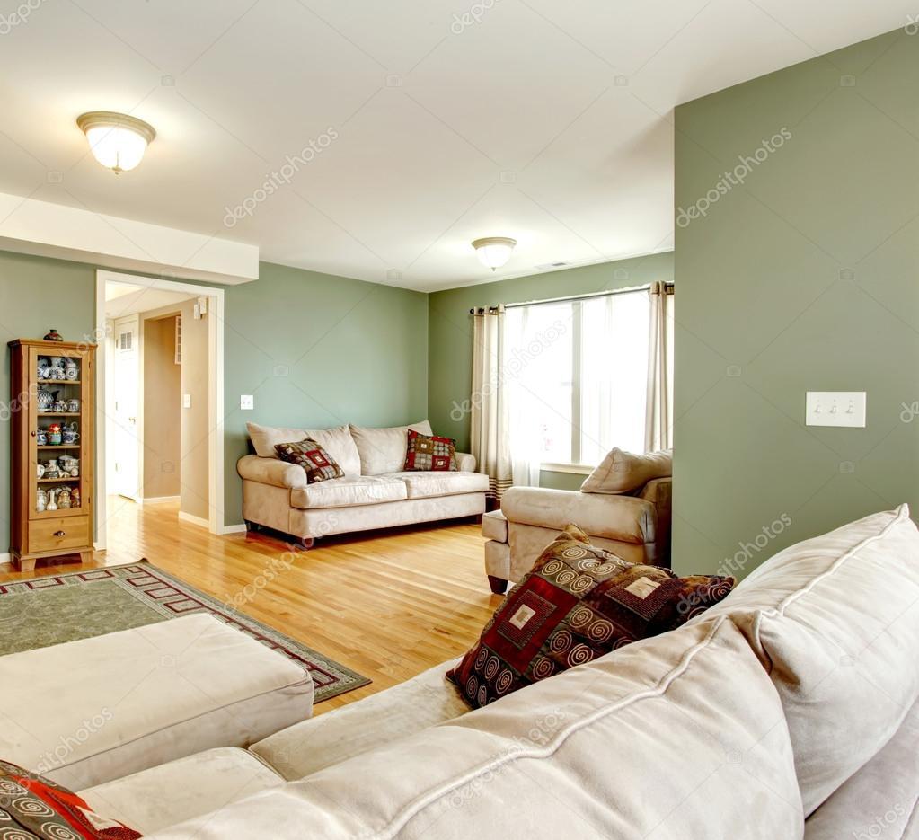 Verde soggiorno con tv foto stock iriana88w 42367239 for Verde soggiorno