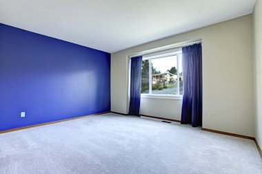 Empty room with a conctrast royal wall