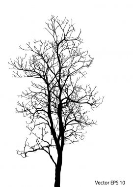 Dead Tree without Leaves Vector Illustration Sketched, EPS 10. clip art vector