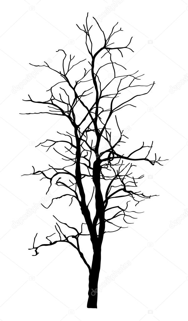 dead tree without leaves vector illustration sketched eps 10 rh depositphotos com Dead Tree Silhouette Vector Art Dead Tree Silhouette Vector